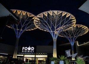 Solar trees power iconic Joburg shopping mall